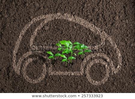 auto · motor · lucht · vuile · schone · automonteur - stockfoto © lightsource