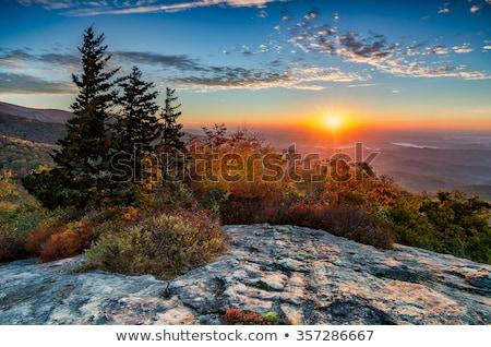zonsopgang · rokerig · bergen · zon · vroeg - stockfoto © alex_grichenko