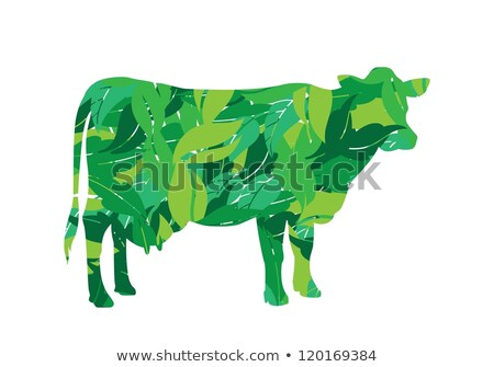 mucca · erba · erba · verde · farm · latte · Daisy - foto d'archivio © zhukow