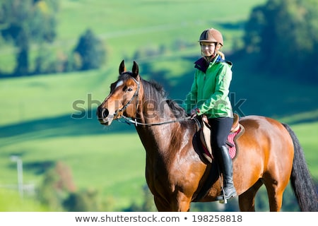 romantic young beauty riding a horse stock photo © konradbak