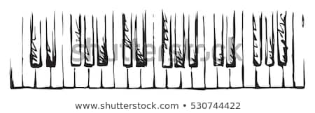 Music keyboard electric piano vector illustration  Stock photo © vectorworks51