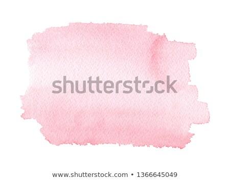 rosa · acquerello · macchia · effetto · acqua · texture - foto d'archivio © sarts