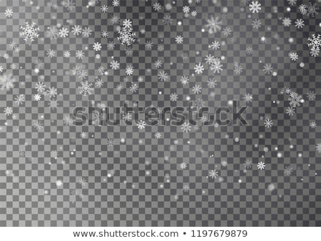 Snowfall with random snowflakes in the dark Stock photo © SwillSkill
