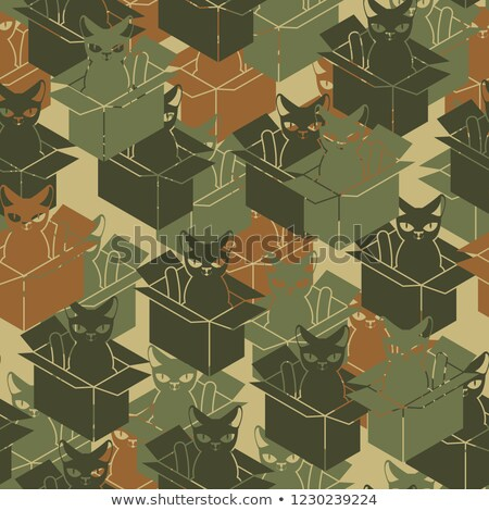 cat in box military pattern pet in cardboard box army backgroun stock photo © maryvalery