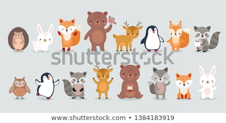 Cute Rabbit Character Vector Illustration  U00a9 Karola Kallai