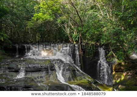 Szene Wasserfall Tageszeit Illustration Wasser Baum Stock foto © bluering
