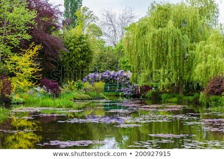 formal · jardins · belo · geométrico · projeto · jardim - foto stock © stefanoventuri