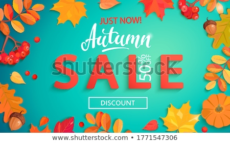 Autumn sale text banner with colorful seasonal fall leaves for shopping discount stock photo © Natali_Brill
