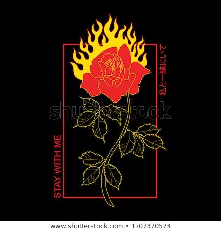 火災 バラ 長い 幹 葉 ストックフォト © blackmoon979