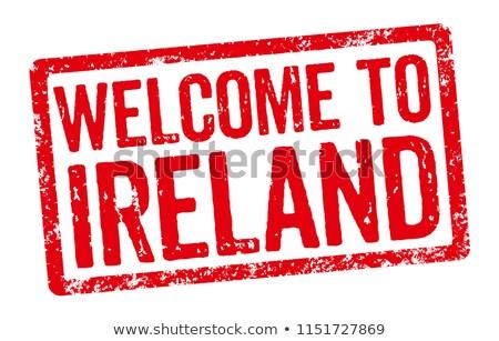 Rojo sello blanco bienvenida Irlanda marco Foto stock © Zerbor