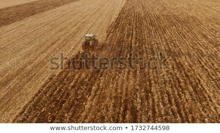 An agricultural field after harvesting with tractor plowing the soil on a summer day. Top view Stock photo © artjazz