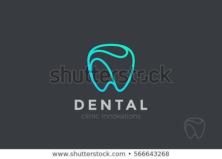 Tand lineair stijl geïsoleerd tanden gezondheid Stockfoto © MaryValery