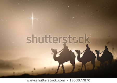 A spirit animal camel Stock photo © bluering