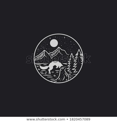 Gece yarısı sahne dağ imzalamak simge vektör Stok fotoğraf © vector1st
