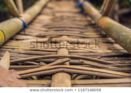 ancient wooden suspension bridge in bali indonesia stock photo © galitskaya