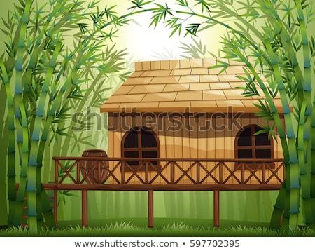 Cabina bambú forestales ilustración paisaje Foto stock © colematt