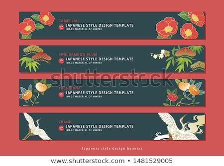 Japonês mandarim laranja conjunto ilustração comida Foto stock © Blue_daemon