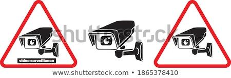 Spy Systems. The Red Digital Background. Vector. Stock photo © tashatuvango