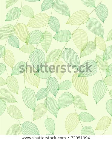 Zöld levelek örvény stílus fa erdő levél Stock fotó © SArts