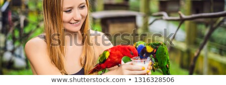 young woman feeding big tropical parrots with milk banner long format stock photo © galitskaya