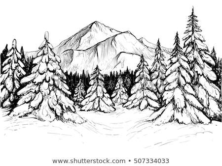 Snow Covering Mountain Landscape Hand Drawn Vector Stock photo © pikepicture