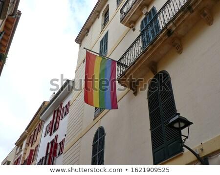 гей гордость радуга флаг здании Сток-фото © dolgachov