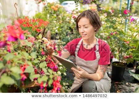 Jeunes Homme agriculteur touchpad séance parterre de fleurs Photo stock © pressmaster