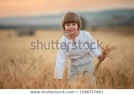 A country boy 6 years old walks through an agricultural wheat field Stock photo © ElenaBatkova
