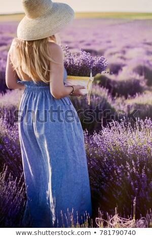 Belle femme chapeau de paille violette champ de lavande belle jeune femme Photo stock © dashapetrenko