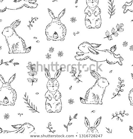 Kawaii rabbit hand drawn illustration Stock photo © barsrsind