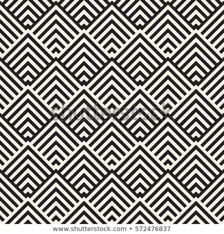 Doolhof lijnen tijdgenoot grafische vector naadloos Stockfoto © samolevsky