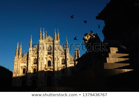 Milan Cathedral at late afternoon Stock photo © aladin66
