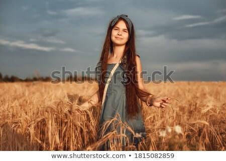 Seigle domaine 12 alimentaire herbe été Photo stock © LianeM
