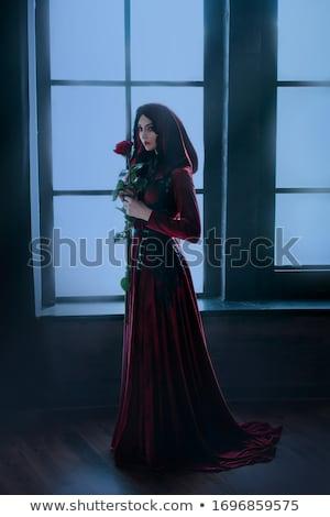 Vampiro senhora atraente mulher vidro Foto stock © ayelet_keshet