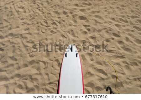 A 3 fin surfboard lays in the sand on the beach Stock photo © Sportlibrary