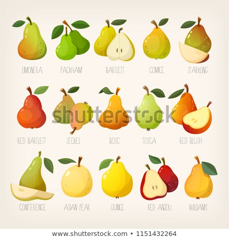 varieties of pears Stock photo © cynoclub