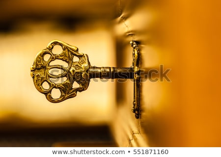 arany · kulcs · fehér · felület · illusztráció - stock fotó © Onyshchenko