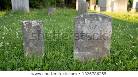 кладбище · старые · черный · Raven · крест · фон - Сток-фото © hofmeester