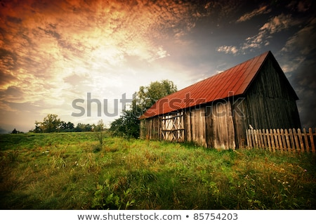 Red Barn in the Morning Sun stock photo © oliverjw