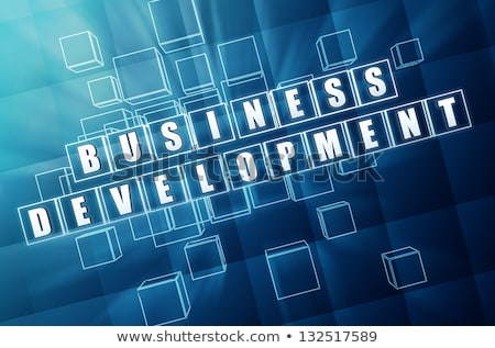 business development in blue glass cubes Stock photo © marinini