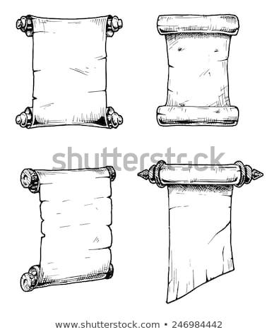vintage scroll manuscript vector set stock photo © krabata
