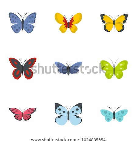 set of 9 decorative butterfly Stock photo © mart