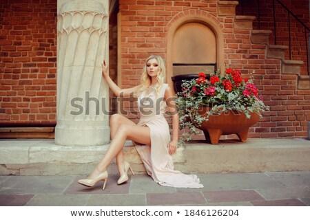 портрет · блондинка · Lady · глядя · камеры · красивой - Сток-фото © PawelSierakowski