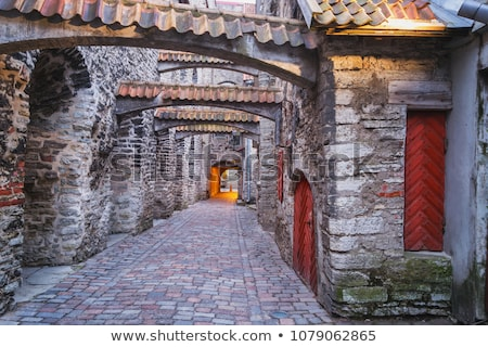 Night Street in the Old Town of Tallinn, Estonia stock photo © anshar