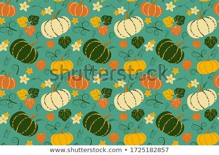 Taze ekolojik kabak bahçe arka plan turuncu Stok fotoğraf © artlens
