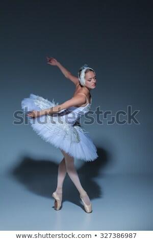 portrait of the young ballet dancer as a swan stock photo © konradbak
