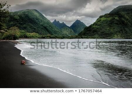 川 · 広い · 島 · タヒチ島 · フランス語 · ポリネシア - ストックフォト © danielbarquero