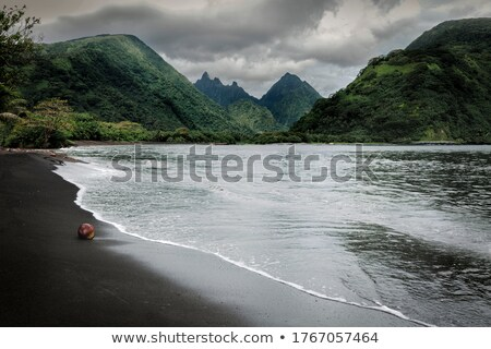 Foto d'archivio: Fiume · ampia · isola · tahiti · francese · polinesia
