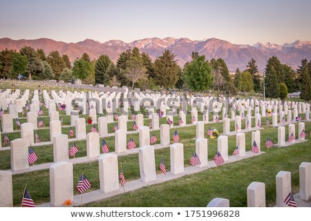 Rows of headstone at military memorial Stock photo © leungchopan