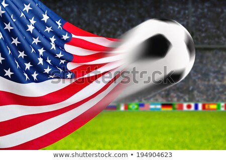 Soccer ball with USA flag on pitch Stock photo © stevanovicigor